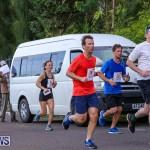 Goslings To Fairmont Southampton Race Bermuda, January 10 2016-160