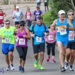 Goslings To Fairmont Southampton Race Bermuda, January 10 2016-189