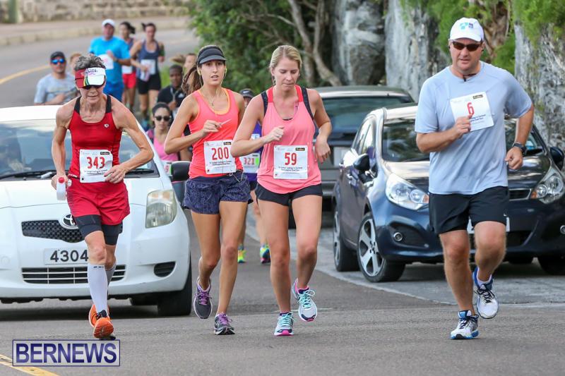 Goslings-To-Fairmont-Southampton-Race-Bermuda-January-10-2016-194