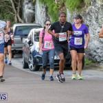 Goslings To Fairmont Southampton Race Bermuda, January 10 2016-196