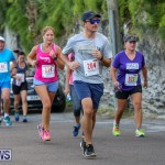 Goslings To Fairmont Southampton Race Bermuda, January 10 2016-197