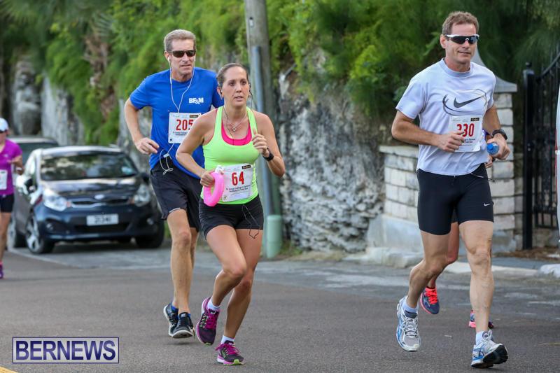 Goslings-To-Fairmont-Southampton-Race-Bermuda-January-10-2016-201