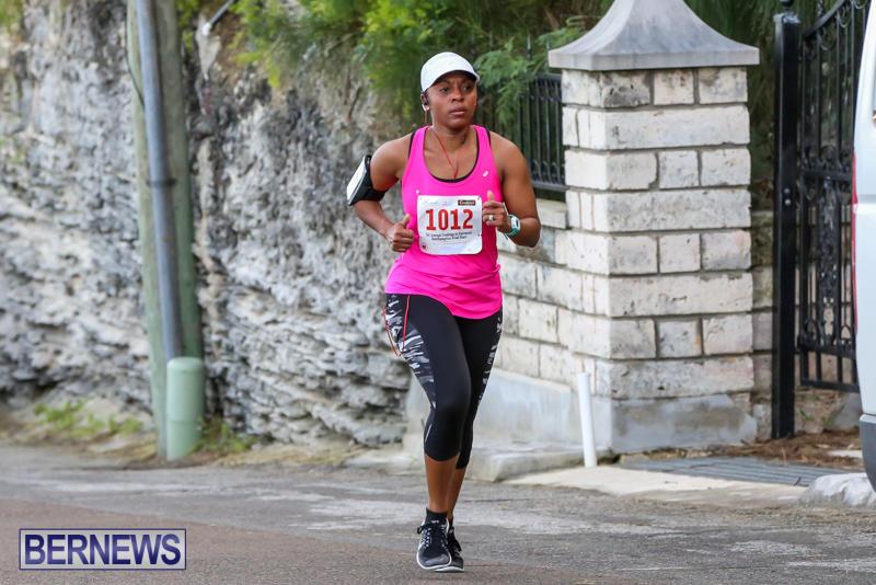 Goslings-To-Fairmont-Southampton-Race-Bermuda-January-10-2016-207