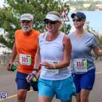 Goslings To Fairmont Southampton Race Bermuda, January 10 2016-22