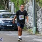 Goslings To Fairmont Southampton Race Bermuda, January 10 2016-25