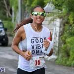 Goslings To Fairmont Southampton Race Bermuda, January 10 2016-251