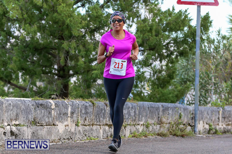 Goslings-To-Fairmont-Southampton-Race-Bermuda-January-10-2016-3