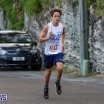 Goslings To Fairmont Southampton Race Bermuda, January 10 2016-32