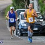 Goslings To Fairmont Southampton Race Bermuda, January 10 2016-33