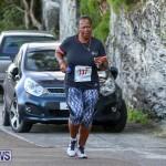 Goslings To Fairmont Southampton Race Bermuda, January 10 2016-5