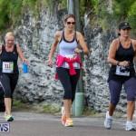 Goslings To Fairmont Southampton Race Bermuda, January 10 2016-69