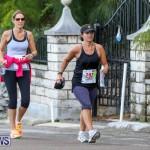 Goslings To Fairmont Southampton Race Bermuda, January 10 2016-70
