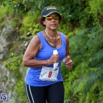 Goslings To Fairmont Southampton Race Bermuda, January 10 2016-8