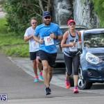 Goslings To Fairmont Southampton Race Bermuda, January 10 2016-96