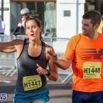 Half Marathon Bermuda Marathon Weekend, January 17 2016 (90)