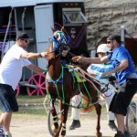 Harness Pony Racing Bermuda Jan 13 2016 (14)