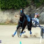 Harness Pony Racing Bermuda Jan 13 2016 (15)