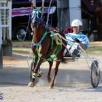 Harness Pony Racing Bermuda Jan 13 2016 (18)