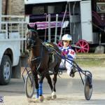 Harness Pony Racing Bermuda Jan 13 2016 (4)