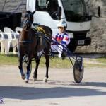 Harness Pony Racing Bermuda Jan 13 2016 (8)