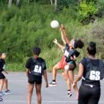 Netball Bermuda Jan 13 2016 (1)