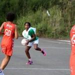 Netball Bermuda Jan 13 2016 (19)