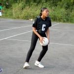 Netball Bermuda Jan 13 2016 (3)