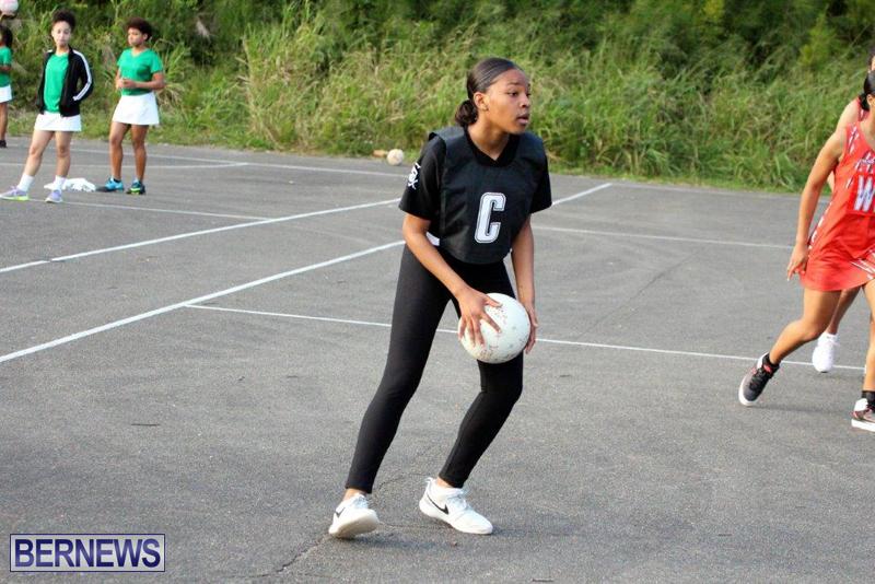 Netball-Bermuda-Jan-13-2016-3