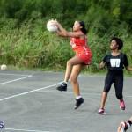 Netball Bermuda Jan 13 2016 (6)