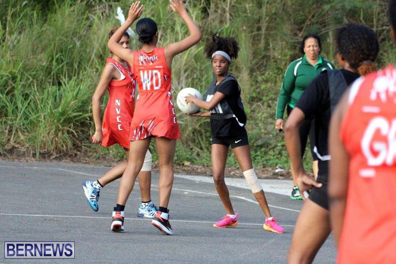 Netball-Bermuda-Jan-13-2016-8