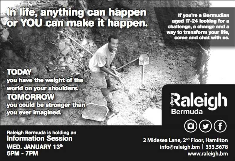 Raleigh Information Session January 2016