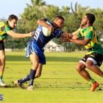 Rugby Bermuda Jan 20 2016 (6)