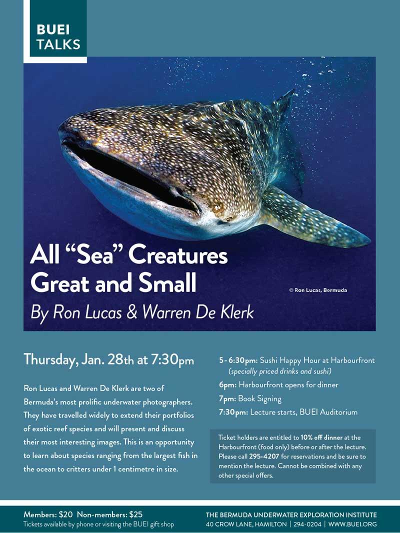 Sea-Creatures_poster