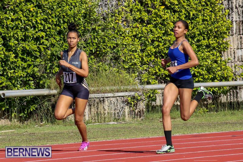 Track-Bermuda-January-9-2016-1