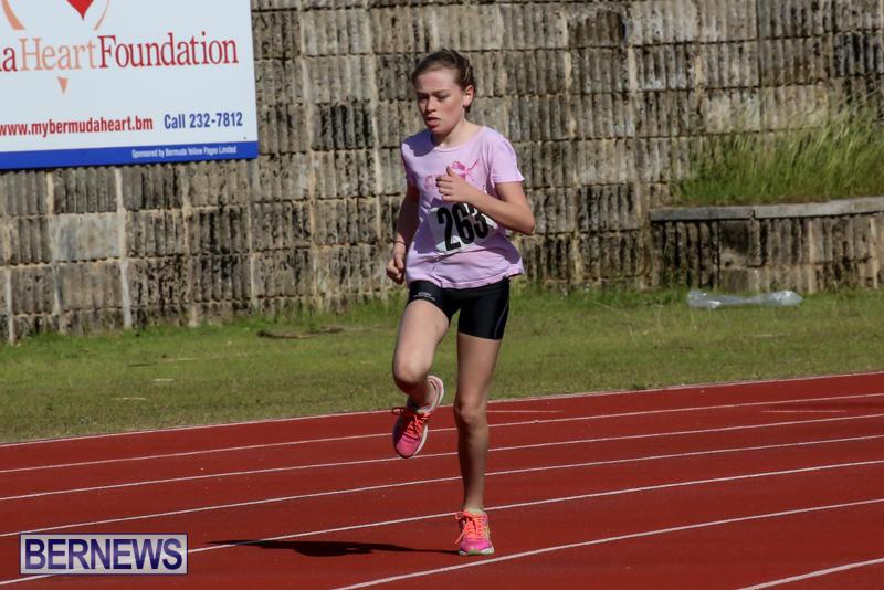 Track-Bermuda-January-9-2016-11
