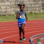 Track Bermuda, January 9 2016-12