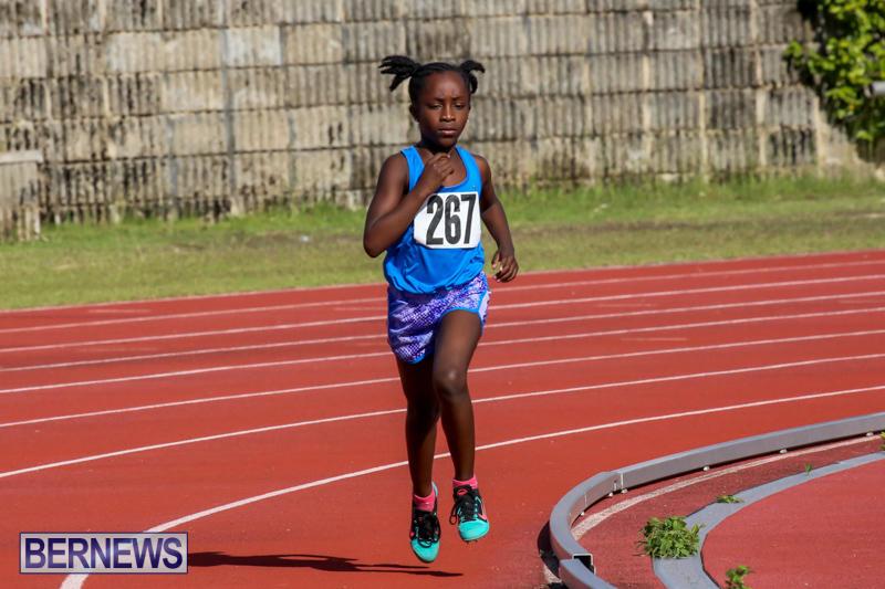 Track-Bermuda-January-9-2016-12