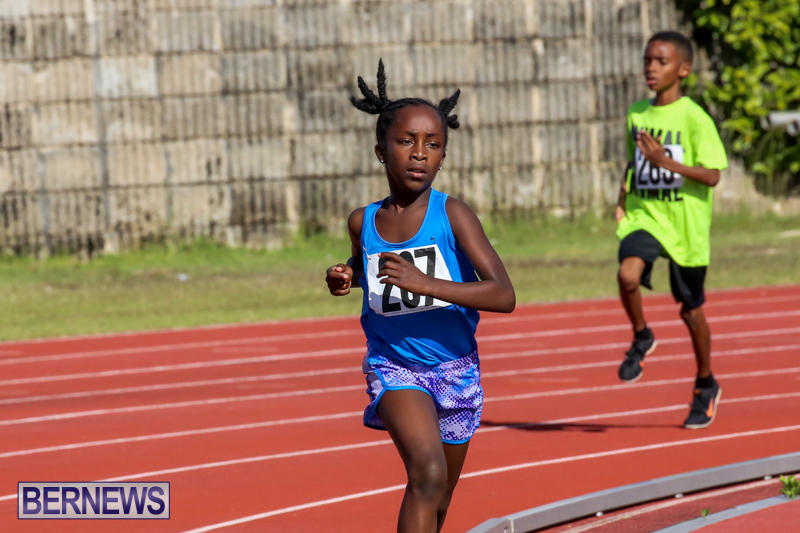 Track-Bermuda-January-9-2016-13