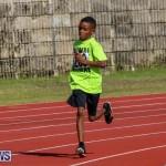 Track Bermuda, January 9 2016-14