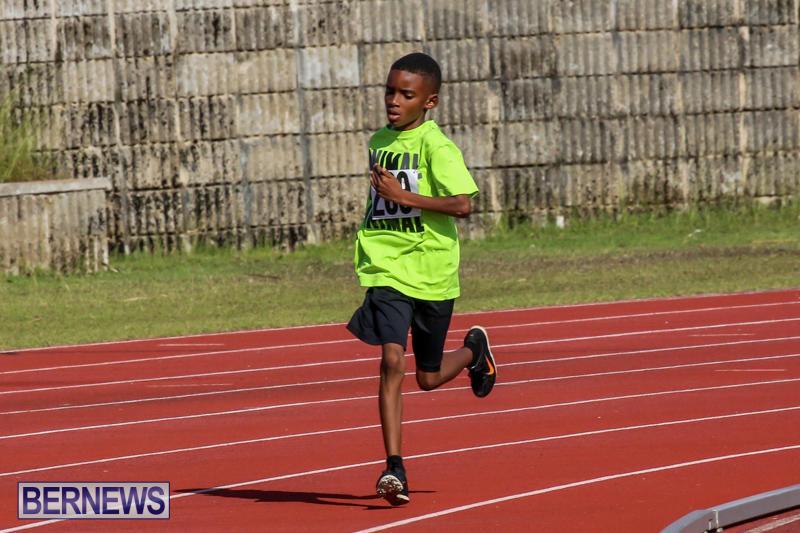 Track-Bermuda-January-9-2016-14