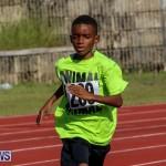 Track Bermuda, January 9 2016-16