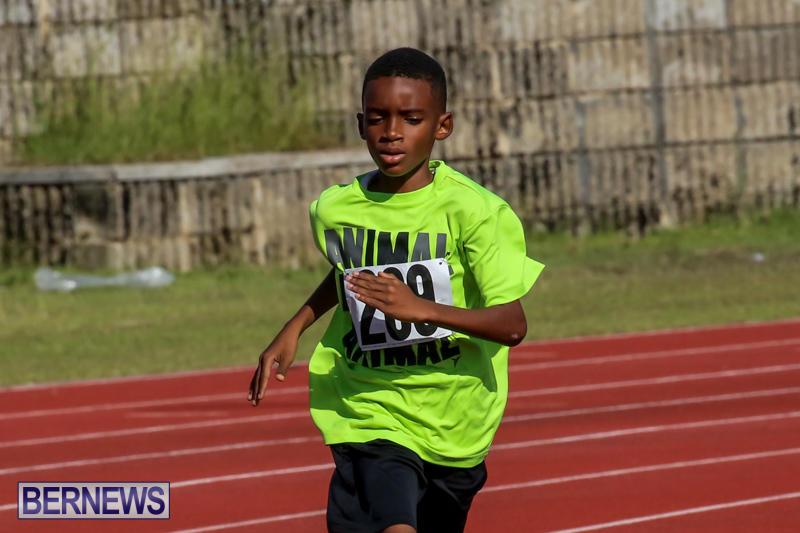 Track-Bermuda-January-9-2016-16