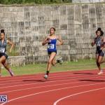 Track Bermuda, January 9 2016-2