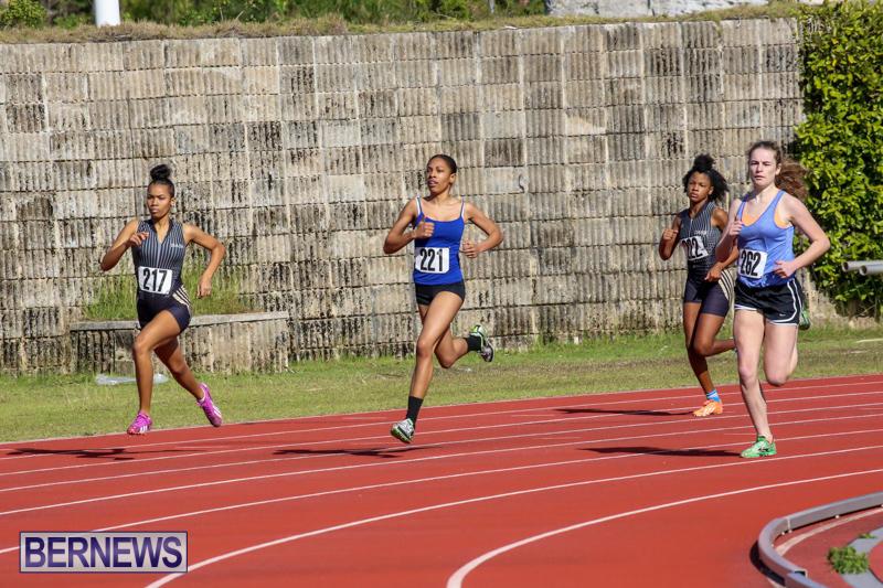 Track-Bermuda-January-9-2016-2