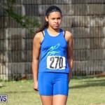 Track Bermuda, January 9 2016-21