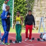 Track Bermuda, January 9 2016-22