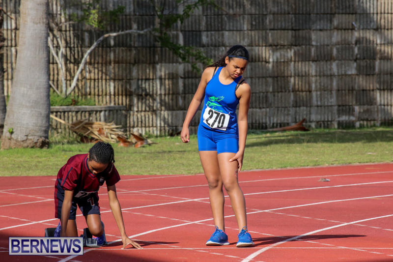 Track-Bermuda-January-9-2016-26