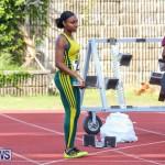 Track Bermuda, January 9 2016-28