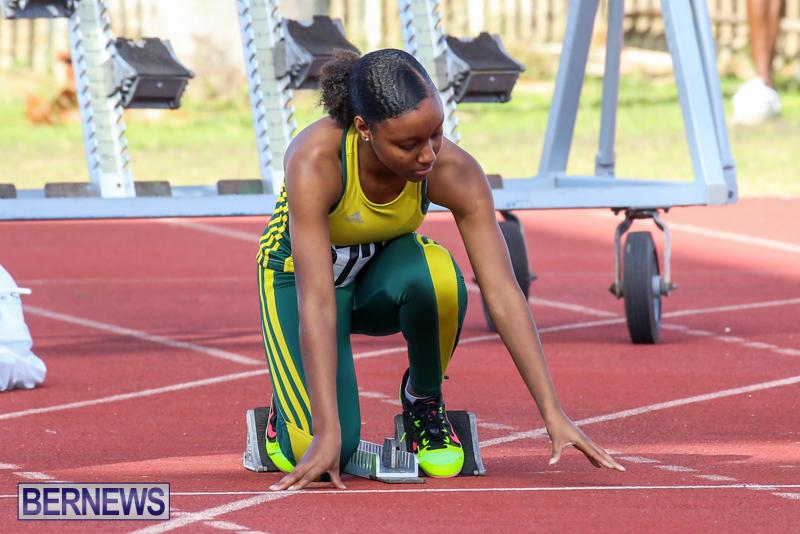 Track-Bermuda-January-9-2016-29