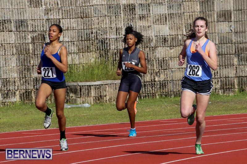 Track-Bermuda-January-9-2016-3